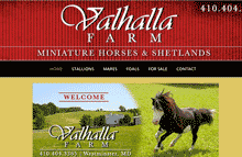 Website Design Westminster, MD Mini horses,Valhalla